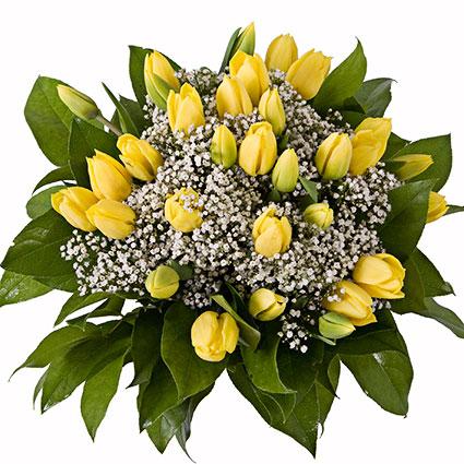 Ziedi ar piegādi. Tulpju pušķī 29 vai 17 dzeltenas tulpes, ģipsene, dekoratīvi zaļumi.