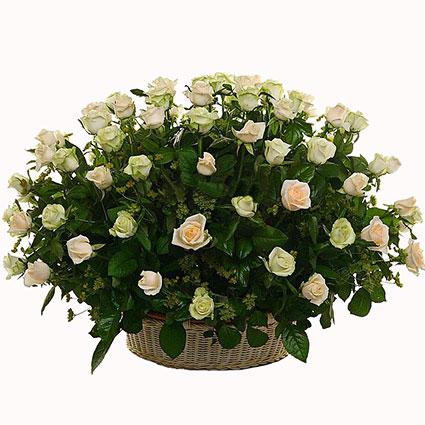 Ziedu piegāde. Kompozīcija pītā grozā no 35 vai 55 baltām rozēm.  Ziedu klāsts ir ļoti plašs. Var gadīties, ka izvēlētie