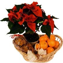Svētku smarža. Ziedu piegāde Rīgā