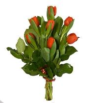 Sarkanas tulpes pušķī