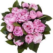 Ziedi: Rozā peoniju pušķis. Piegāde Rīgā