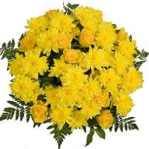 Ziedu pušķis: Saulains rudens