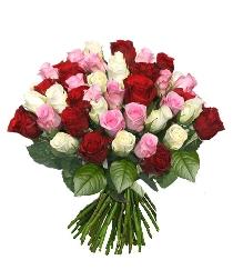 Ziedi: Svētku salūts