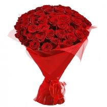 Ziedi: Lēdija sarkanā