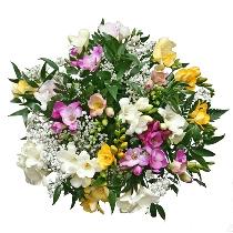 Ziedu pušķis: Frēziju smarža