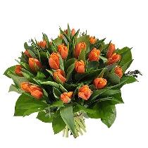 Oranžu tulpju pušķis
