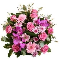 Ziedi: Tropu pieskāriens