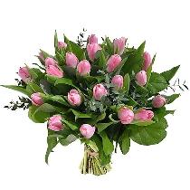 Rozā tulpju pušķis