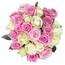 Ziedu pušķis: Rožainais