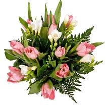 Ziedi: Rozā tulpes un baltas frēzijas