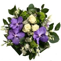 Ziedi: Zilais dimants