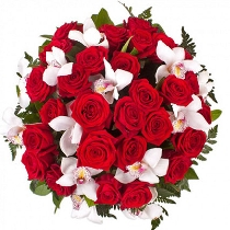 Ziedi: Jūtas