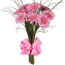 Цветы: Лакомство