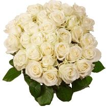 Baltu rožu pušķis