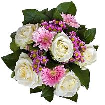 Ziedi: Rotaļa. Piegāde Rīgā un Latvijā