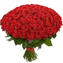 Ļoti daudz sarkanas rozes! Pušķī 101 roze!!!